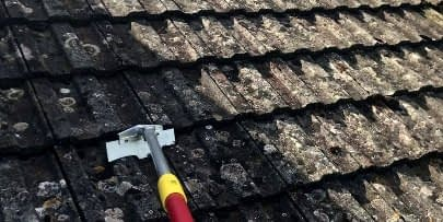 roof steam cleaning service