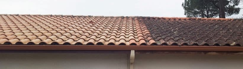 Local Roof Cleaning