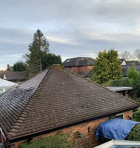 local roof cleaners